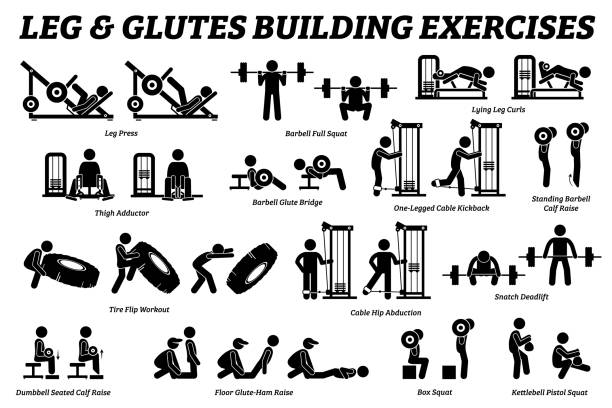 Legs and glutes building exercise and muscle building stick figure pictograms. Artworks depict set of weight training reps workout for legs and glutes by gym machine tools with instructions and steps. exercise machine stock illustrations
