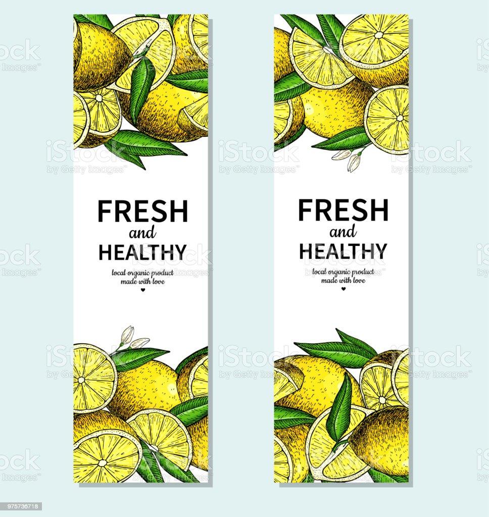 Zitrone Banner Vektor-Zeichenprogramm. Zitrusfrucht-Frame-Vorlage. - Lizenzfrei Ast - Pflanzenbestandteil Vektorgrafik