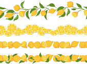 Lemon branches and fruits seamless horizontal borders.
