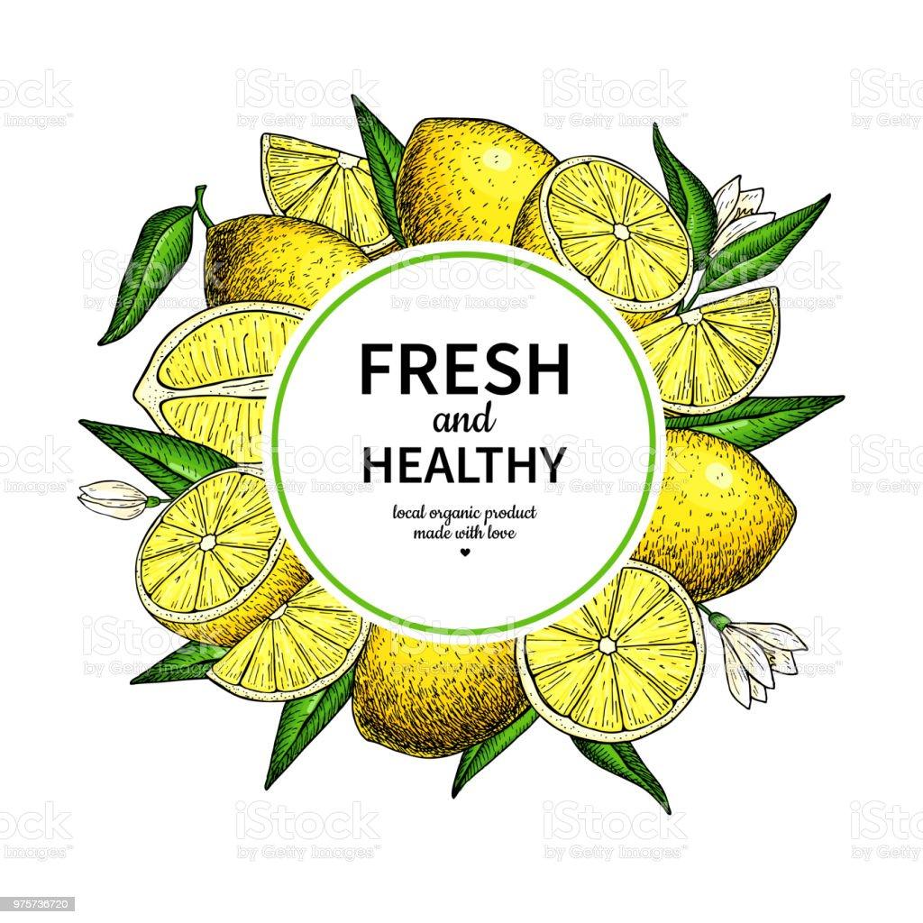 Zitrone Frame Vektor-Zeichenprogramm. Zitrusfrüchte Kreis Etikettenvorlage. - Lizenzfrei Ast - Pflanzenbestandteil Vektorgrafik