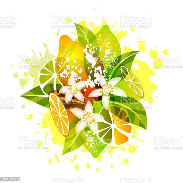 Лимонные Фри С Ломтиками Листьями И Цветами — стоковая векторная графика и другие изображения на тему Ботаника