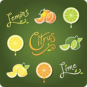 Variety of lemon, lime and citrus fruit vector icons and type treatments for each fruit