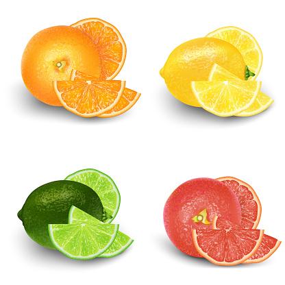 Lemon, Lime, Orange, Grapefruit Fresh Fruit Set. Realistic 3d vector illustration set. Isolated design elements for packaging. Product