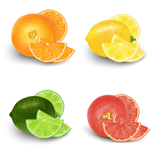 Lemon, Lime, Orange, Grapefruit Fresh Fruit Set. Realistic 3d vector illustration set. Isolated design elements for packaging. Product Lemon, Lime, Orange, Grapefruit Fresh Fruit Set. Realistic 3d vector illustration set. Isolated design elements for packaging. Product labeling. lemon fruit stock illustrations