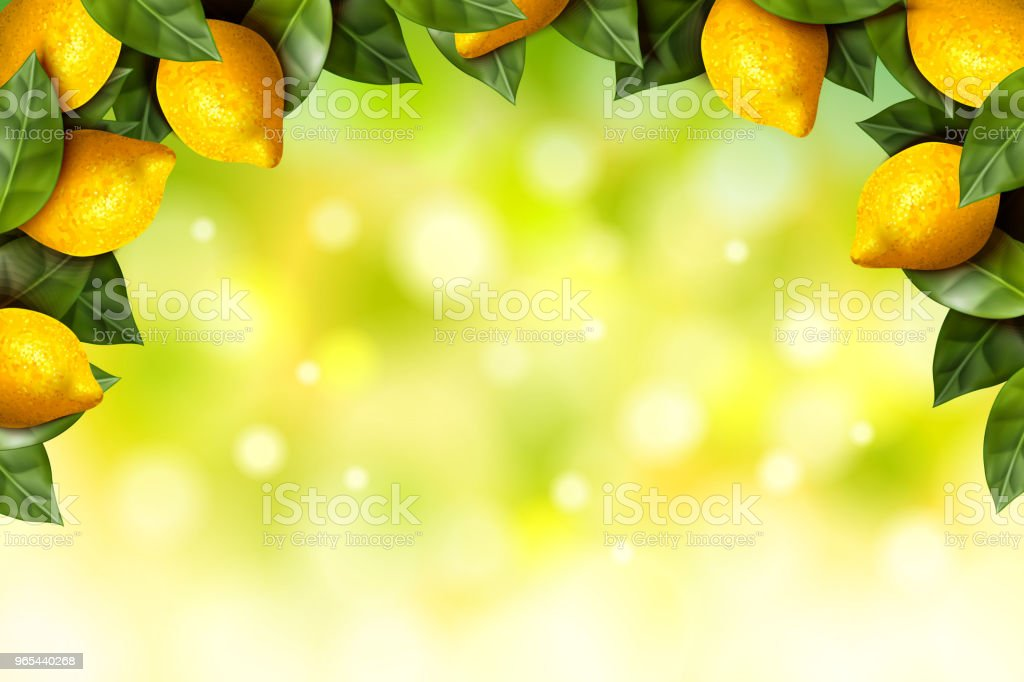 Lemon orchard frame royalty-free lemon orchard frame stock vector art & more images of agriculture