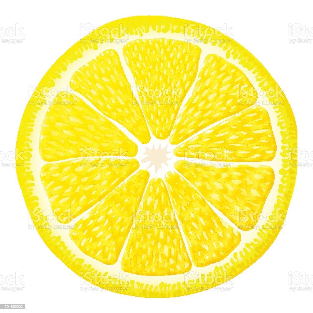 section of lemon fruit isolated on white background qualitative