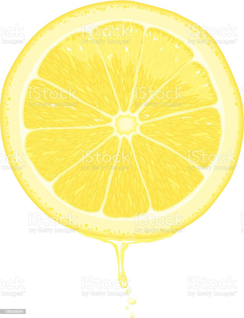 Lemon Slice royalty-free lemon slice stock vector art & more images of agriculture