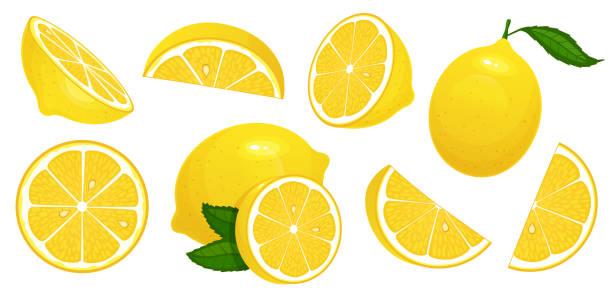 レモンスライス。フレッシュシトラス、ハーフスライスレモン、みじん切りにした、孤独な漫画ベクターイラストセット - レモン点のイラスト素材/クリップアート素材/マンガ素材/アイコン素材