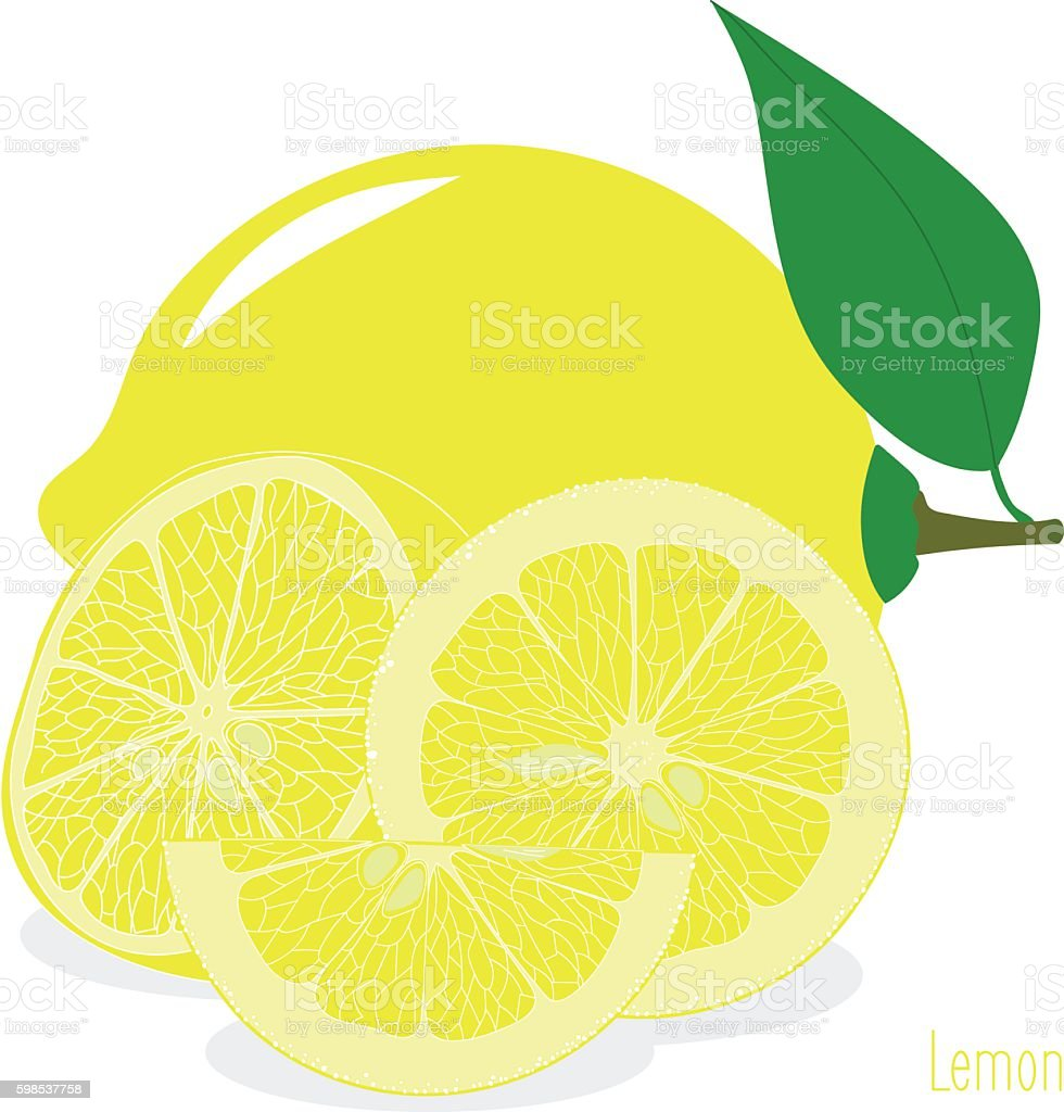 Lemon,  slices, set of lemons lemon slices set of lemons – cliparts vectoriels et plus d'images de agrume libre de droits