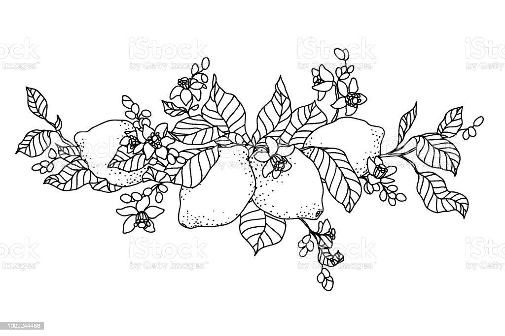 Ilustración de Árbol De Limón En El Tatuaje Estilo De Imagen Luz ...