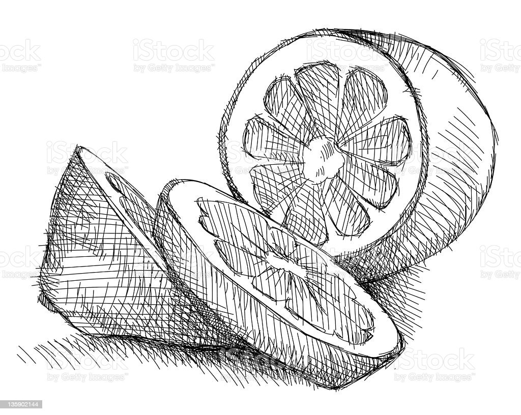 Lemon royalty-free lemon stock vector art & more images of cross hatching