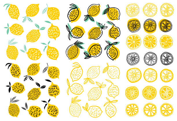 lemon vektor-illustration - zitrone stock-grafiken, -clipart, -cartoons und -symbole