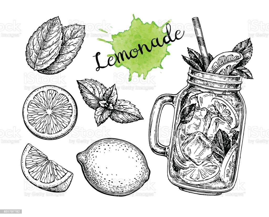 Lemonade and ingredients. - illustrazione arte vettoriale