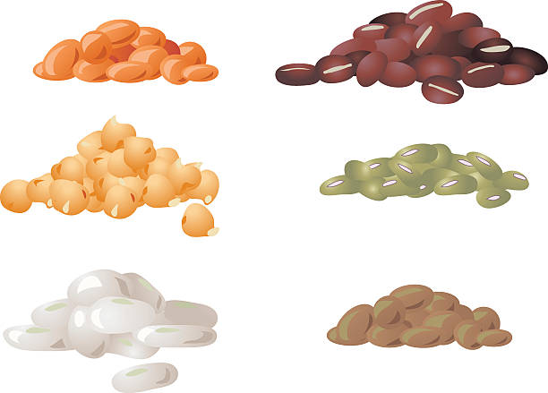 Lentils, Beans and Chickpeas vector art illustration