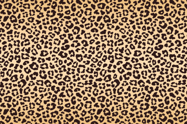 leopard beige brown spotted fur texture. vector - leopard texture stock illustrations, clip art, cartoons, & icons