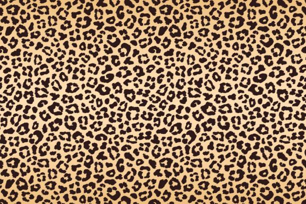 ilustraciones, imágenes clip art, dibujos animados e iconos de stock de textura de piel manchado marrón beige leopardo. vector de - textura de leopardo
