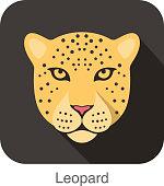 Leopard, Cat breed face cartoon flat icon design