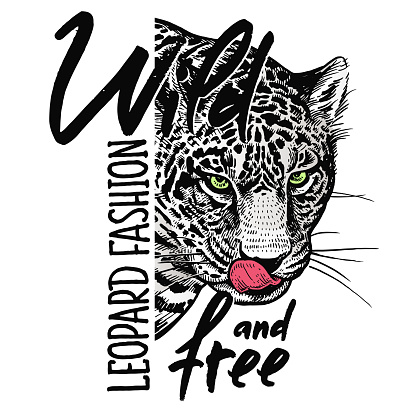 """Leopard close-up and inscription """"Wild and free"""". Vector poster."""