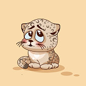 Leopard cub confused