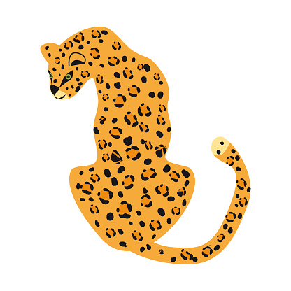 Leopard cute trend style, animal predator mammal, jungle. Vector illustration isolated on white background