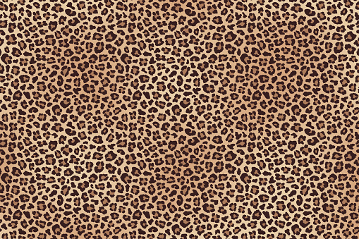 Leopard fur horizontal texture. Vector