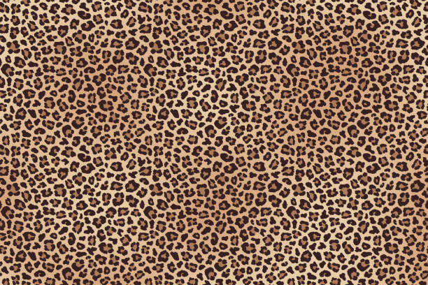 leopard fur horizontal texture. vector - futro tkanina stock illustrations