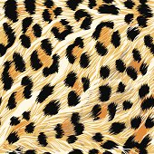 Detailed, seamless, repeating tile of leopard fur.  File contains AI, EPS and large jpeg.