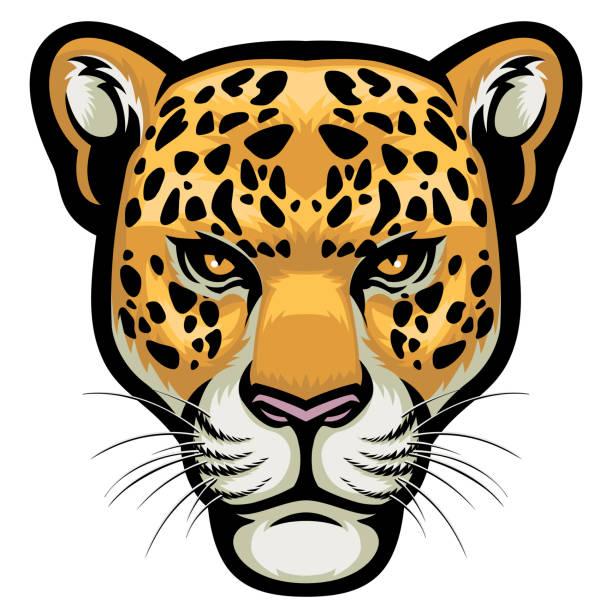 leopard head - jaguar stock illustrations