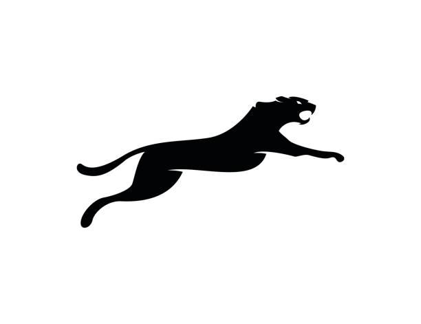 leopard icon - jaguar stock illustrations