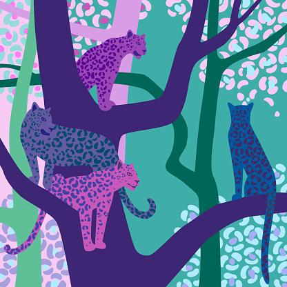 Leopard illustration. Wildlife.