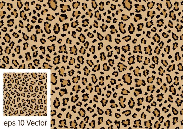 Leopard pattern design, vector background vector art illustration