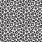 Vector illustration Leopard print seamless background pattern. Black and white