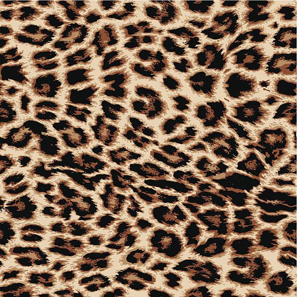 stockillustraties, clipart, cartoons en iconen met leopard print - dierenhaar