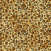 Leopard seamless pattern.  Vector background for fabric,textile, wrapping.