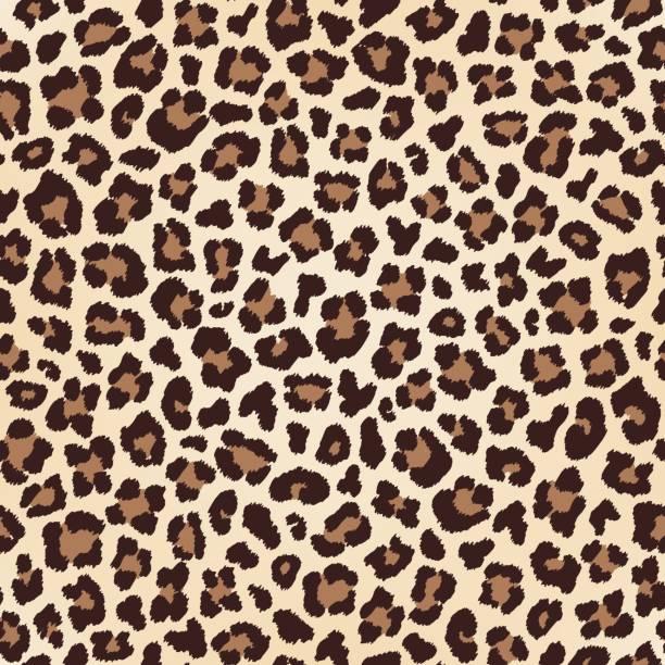 ilustraciones, imágenes clip art, dibujos animados e iconos de stock de textura transparente de leopardo, imitación piel - textura de leopardo