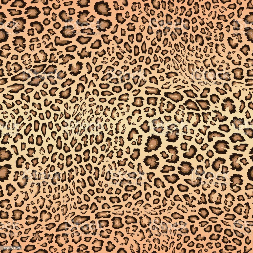 Leopard Skin Pattern Vector Seamless Texture Animal Print Jaguar Cheetah  Stock Illustration - Download Image Now - iStock