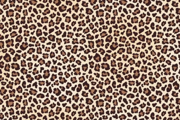 ilustraciones, imágenes clip art, dibujos animados e iconos de stock de leopardo de manchas de piel, textura horizontal. vector de - textura de leopardo