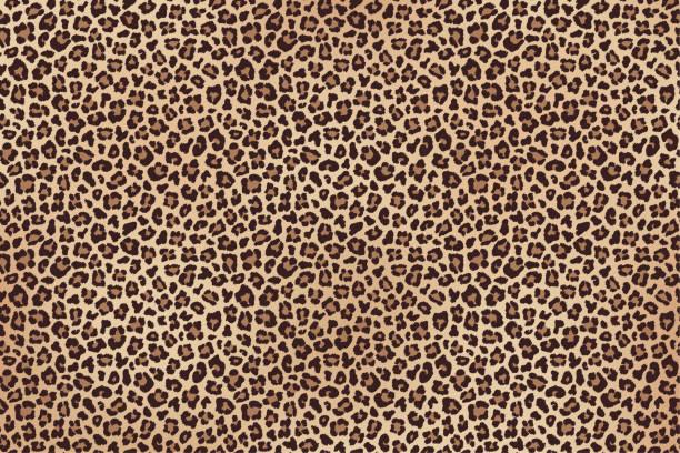 ヒョウは茶色の毛皮の水平テクスチャを発見しました。ベクトル - ヒョウのテクスチャ点のイラスト素材/クリップアート素材/マンガ素材/アイコン素材