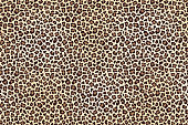 Leopard spotted fur texture background. Vector illustration