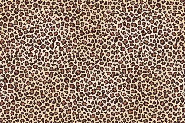 leopard spotted fur texture - leopard texture stock illustrations, clip art, cartoons, & icons