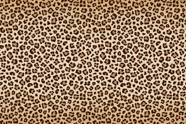 leopard texture, brown beige with darker border. vector - leopard texture stock illustrations, clip art, cartoons, & icons