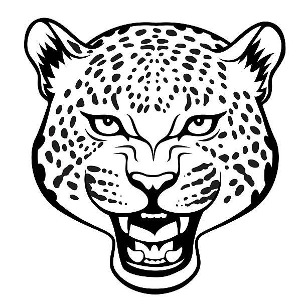 leopard Stylized agressive leopard head  black illustration jaguar stock illustrations