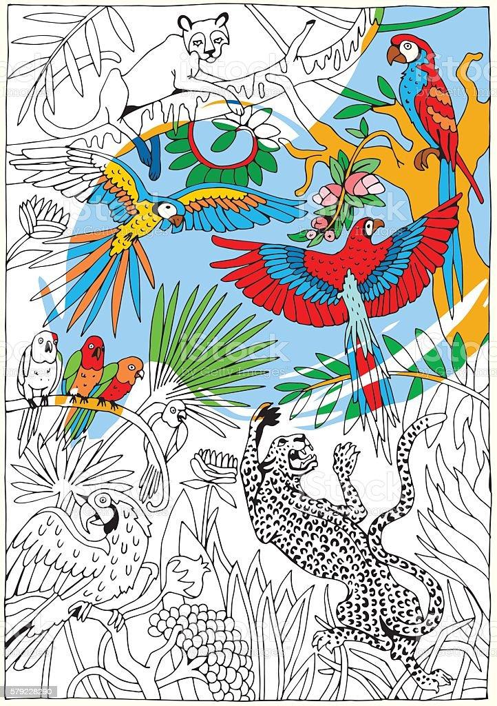 Leopards and Parrots in the Jungle. Tropical wildlife theme. - ilustração de arte em vetor