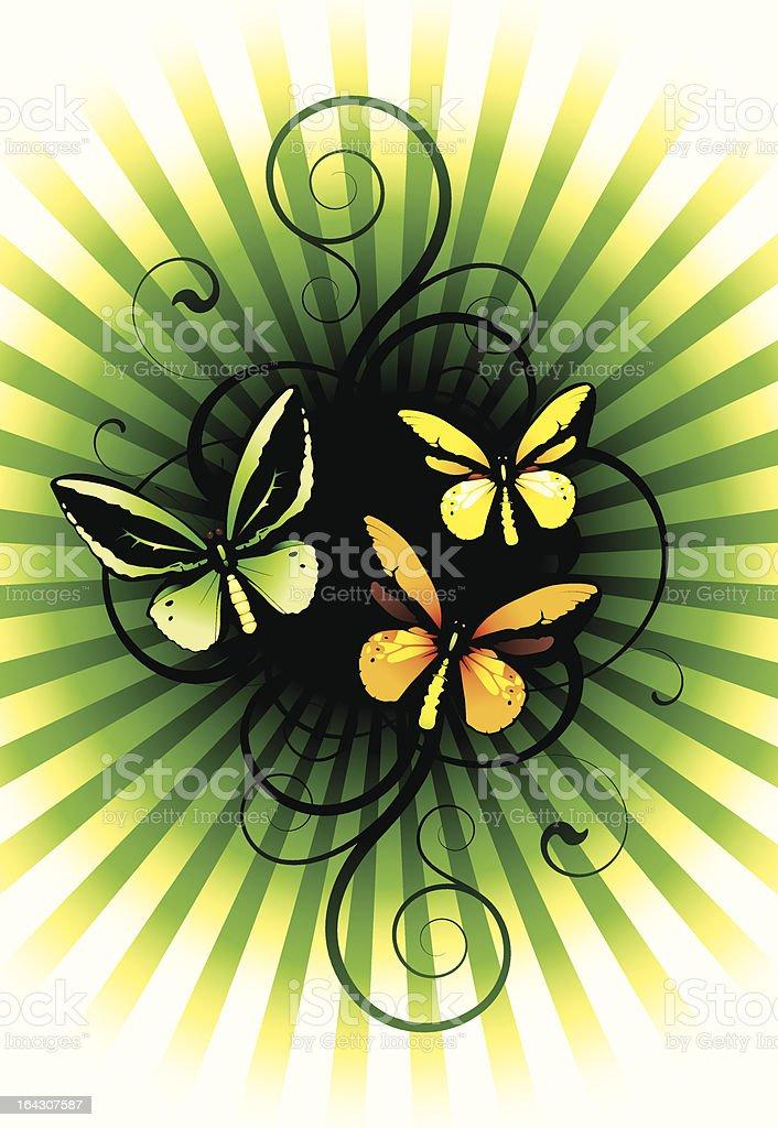 lepidopterans royalty-free stock vector art