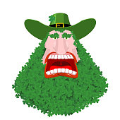 Leprechaun beard in Shamrock face. Clover mustache. Ireland holiday. St. Patrick's Day. Traditional Irish holiday. Green leaves trefoil