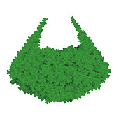 Leprechaun beard in Shamrock isolated. St Patricks day Holiday of Ireland. Traditional Irish holiday