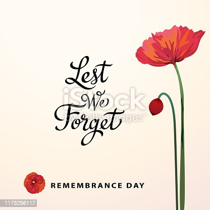 The ceremony of Remembrance Day that honors all military heroes who died in the First World War for the Commonwealth member states, the red poppy is a symbol of remembrance and hope for peaceful world.