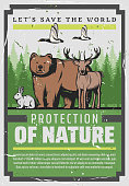 Protect nature, save wild animals vintage poster. Vector Wildlife and World Animal day, Save World forests and stop poaching on grizzly bear, deer and elk antlers, wild planet ecosystem protection