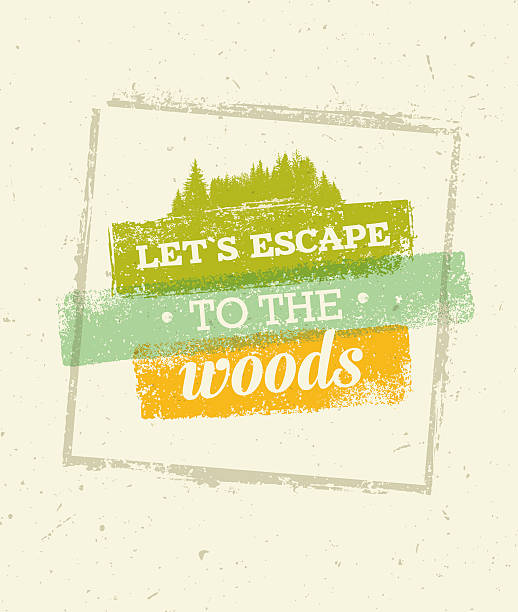 Let's Escape To The Woods Outdoor Adventure Rough Vector Adventure  Motivation Concept. Vector Outdoor Design on Rough Distressed Background adventure borders stock illustrations