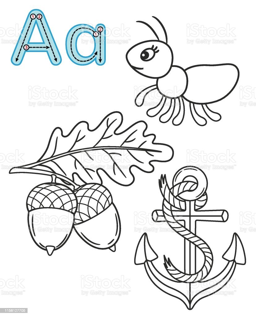 Letter A Anchor Ant Acorn Vector Coloring Book Alphabet